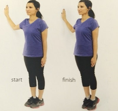 spine exercise